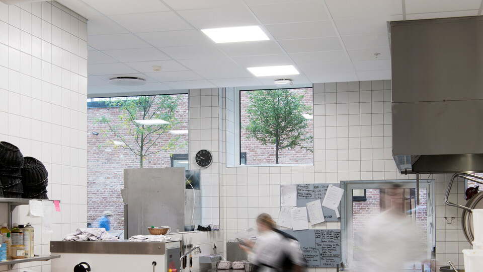 Featured products: Rockfon® Hygienic™, A24, 600 x 600